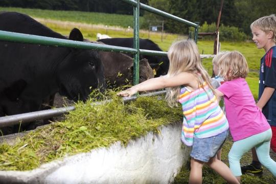 Ferien auf dem Bauernhof