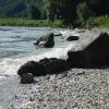 Wellen brechen sich am Donaustrand bei Jochenstein