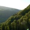 Die Donauleite mit ihren Laubwäldern