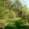 Vielfältige Eindrücke vom Naturschutzgebiet Donauleite
